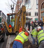 Within the first hours Boylston Street was reopened to the public, workers from M-O-N Landscaping Inc. were planting sidewalk trees along the retail corridor.