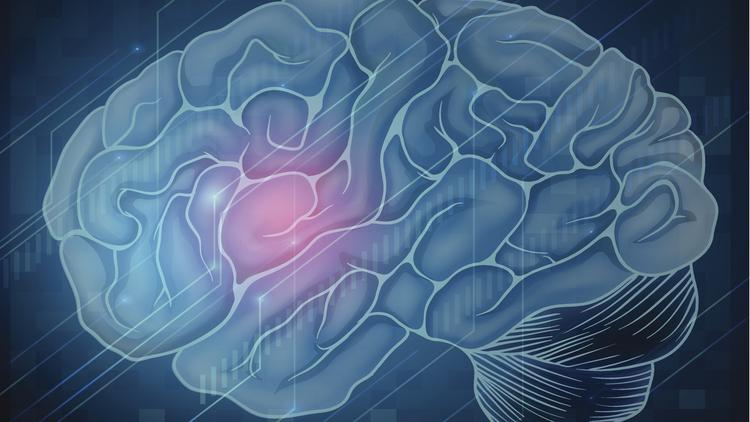 The University of Cincinnati today announced it is one of the founding members of the Midwest Pain Consortium, which will conduct research projects to better predict which patients would benefit from current and next-generation pain medications.