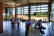 """Stoller Family Estate definitely walks the sustainability walk. It's the first LEED Gold certified winery in North America. Its tasting room alone is a """"net zero energy"""" space, with a 236-panel solar installation, wood from salvaged timbers, electric vehicle charging station and two nine-foot curtain walls that allow natural light and, as they open to a patio, cooling in the summer. Stoller is, naturally, both LIVE- and Salmon Safe-certified."""