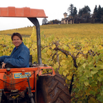 Willamette Valley Vineyards expands into Eastern Oregon with 42 new acres