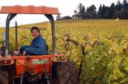 Willamette Valley Vineyards' Jim Bernau (shown here on his tractor) maintains that wines made with consideration for the environment, his employees, and the community simply taste better. Bernau earned permission from the state's liquor commission in 2005 to include a ten cent recycling refund statement on its wine labels. It worked with Amorim Cork America, SOLV and Yemm & Hart on a nationwide recycling campaign. It recycles corks dropped off at its tasting room. Willamette also uses recycled paper throughout its facility and recycles its cardboard shippers, all plastic, aluminum, paper, and cardboard products. Plus, the vineyard offers 50 gallons of biodiesel a month to each employee at no cost. An employee environmental impact committee meets once a quarter to crunch green ideas. There's also this: Willamette works with the Oregon Environmental Council and the Oregon Wine Board on carbon neutrality efforts. One more thing: It's both LIVE- and Salmon Safe-certified.