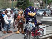 A number of mascots attended the May 6, 2014, tourism rally on the west steps of the Capitol, including Spike the Dog from the Colorado Railroad Museum, Talon the Hawk from the state parks and wildlife department and Dinger the Rockies mascot.