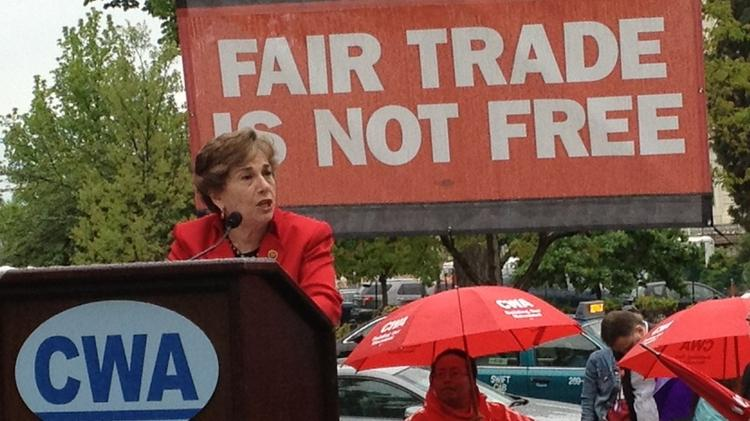 Rep. Jan Schawkowsky, D-Ill., speaks to a union rally on Capitol Hill against the proposed Trans-Pacific Partnership trade agreement.