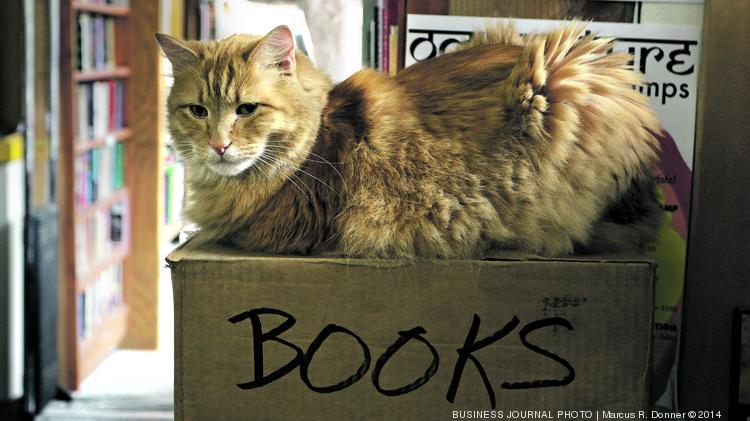 Even the cats in Seattle are drawn to a good book. Or maybe it's just the box. This is Schmoo, one of the Twice Sold Tales bookstore cats.