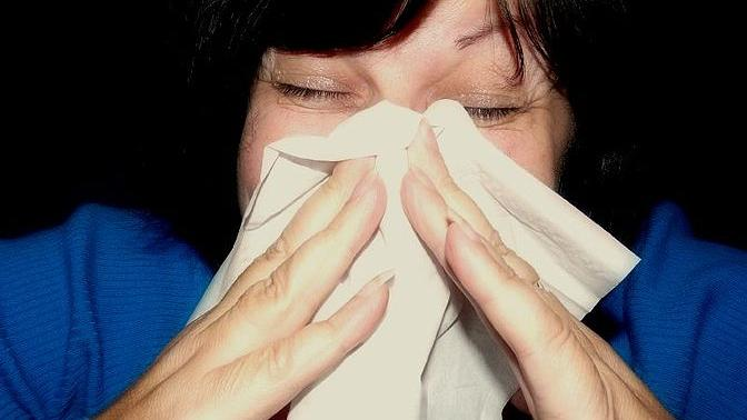 Columnist Ed Goldman notes that it is the season for allergy sufferers to commiserate about pollen counts.