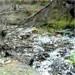 City of San Antonio, other stakeholders to study impact of pollution on Olmos Basin
