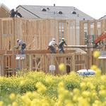 First step after Natomas moratorium is lifted?