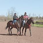 Post time for Fort Erie Race Track