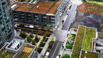 The program will help back energy-efficient retrofits in South Waterfront and other Portland urban renewal areas.