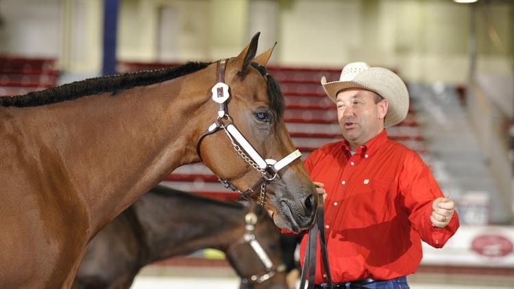 Scott O'Connell is co-leader of Nixon Peabody's litigation team by day - but when he's not at work, he's a cowboy. O'Connell owns a horse farm and a dozen horses – and competes in horse shows around the country.