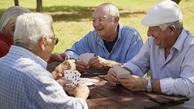 SeniorLink provided services to people age 55 and older to help them remain healthy and independent as long as possible with both medical and social offerings at home and at day health centers.