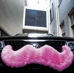 Molchany files resolution in support of Lyft, Uber