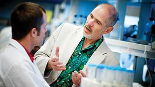 Douglas Green, Ph.D., chair of the St. Jude Department of Immunology.