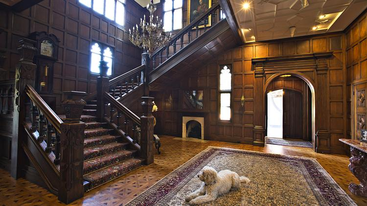 Kelley Porter's dog Dude sits in the entrance way to the Stonebrook Court Manor.