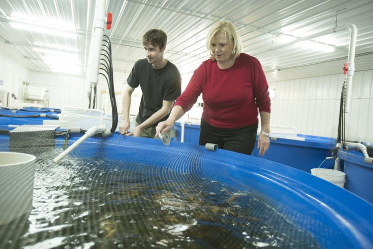 Central Greens is showing aquaponics is not dead in Milwaukee. Click here for story.