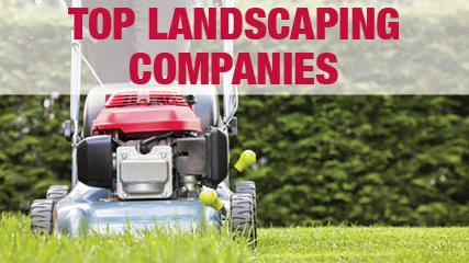 the list top landscaping companies south florida