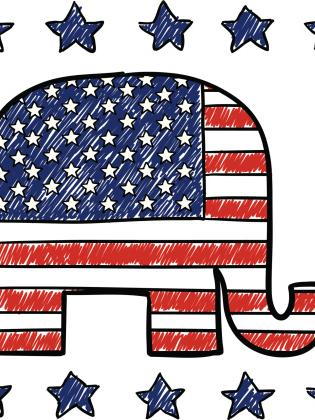 The Republican Party of Florida has elected new leadership.