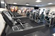 At the Louisville Marriott Downtown, the fitness center features a scene of horses racing on one of the walls.