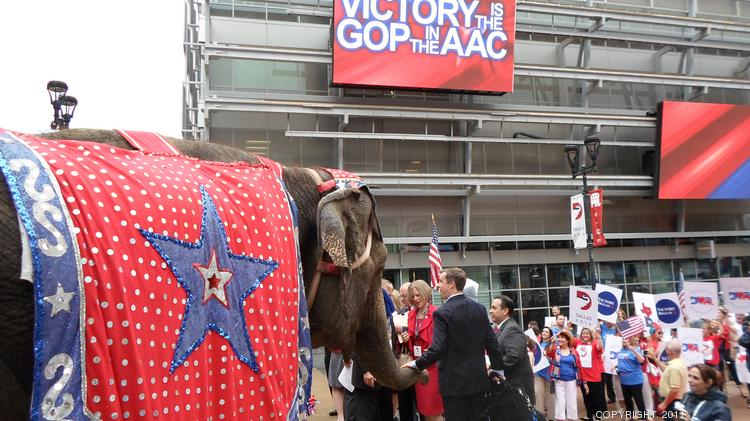 Elephants were on hand at the American Airlines Center to greet site selectors from the Republican Party. Dallas' bid for the GOP convention was truncated Tuesday, and the state party chief says politics was part of the process.