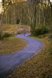 Tom Okel, executive director, Catawba Lands Conservancy, recommends The Carolina Tread Trail. A portion of the trail, Little Sugar Creek Greenway, is pictured above.