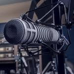 Public radio cancels Wits show