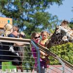 You won't be able to smoke at the Maryland Zoo starting next month