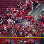 Cincinnati Reds fans 'stagnant,' new study's author says