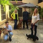 South Florida companies celebrate Take Your Dog to Work Day