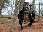 10 cool robots made in Massachusetts (slide show)