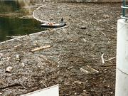 In 1996 the Buffalo Creek Fire and subsequent floods dumped tons of dirt and debris into Denver Water's Strontia Springs reservoir.