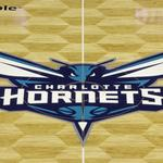 Charlotte Hornets, Goodwill Industries get <strong>Jerry</strong> Awards for 2015