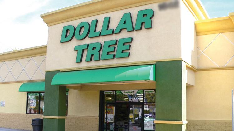 Dollar Tree's Deals store is one of several retailers snapping up existing shopping center space in Central Florida.