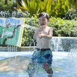 Manatee County water park proposal goes before commission