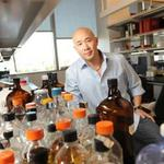 New target: UCSF researchers eye common cold drug to beat back multiple sclerosis