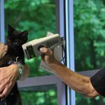 Allegheny County police departments receive microchip scanners to reunite pets, owners (Video)