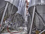 Wisconsin ranks 4th-worst for craft brewery growth in U.S.