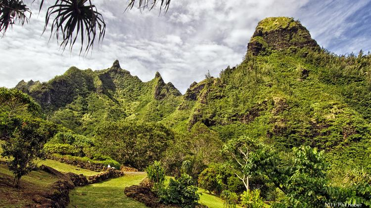 The National Tropical Botanical Garden's Limahuli Garden and Preserve on Kauai is seen in this file photo. The garden has partnered with the St. Regis Princeville Resort on a program where guests can sponsor the planting of trees on Kauai's North Shore.