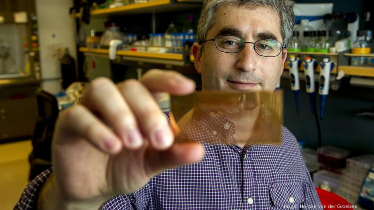 Stanford assistant professor Dr. Brian Feldman: Seeking quick answers for type 1 diabetics from a simple fingerprick of blood.