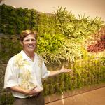 Downtown Honolulu's Pacific Guardian Center installs