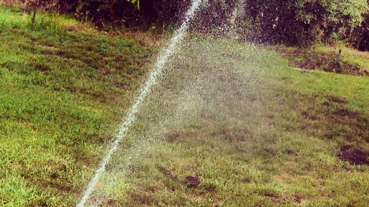 San Antonio area residents might have to further reduce their lawn maintenance if the Edwards Aquifer Authority declares Stage 4 water restrictions.