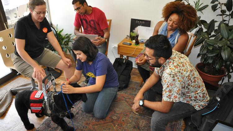 Katrina Boldry (left), owner of Aurora's Bold Lead Designs, works with a team of students from MBAs Across America, that is helping her prepare for a major expansion. The team includes (L to R): Saurabh Kumar, Nydia Cardenas (kneeling), Stefanie Thomas and Kory Vargas Caro.