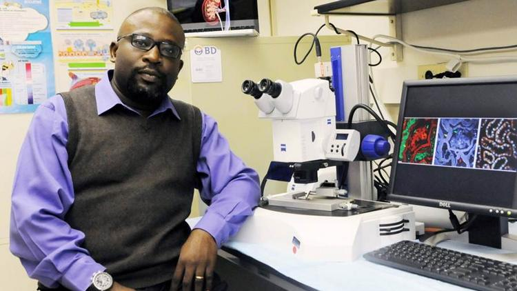 Adebowale Adebiyi, Ph.D., assistant professor in the Department of Physiology at the University of Tennessee Health Science Center