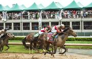 Orb which took the lead down the stretch in the 2013 Kentucky Derby, won the race by two-and-a-half lengths.
