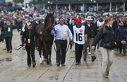 Orb is escorted to the paddock before the Kentucky Derby.