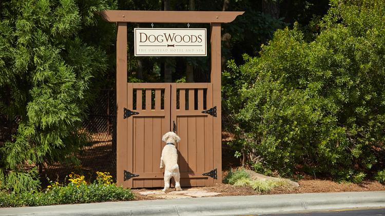 The Umstead Hotel & Spa has opened a new fenced-in, dog park for its hotel guests, named DogWoods after North Carolina's state flower.