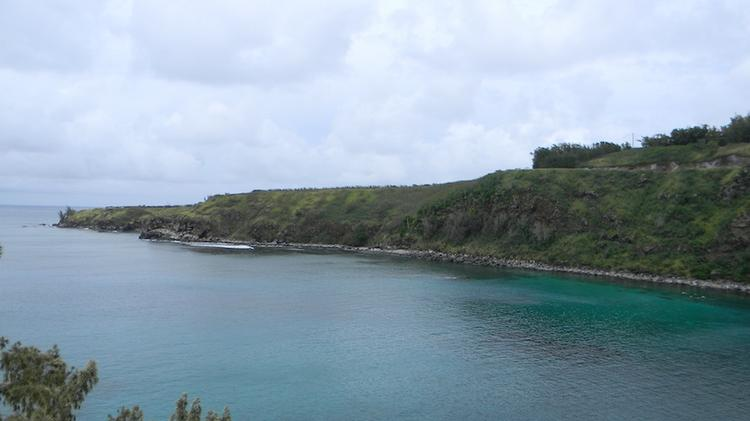 Gov. Neil Abercrombie has released $19.5 million for the state to purchase Lipoa Point near Honolua Bay on Maui, seen here, from Maui Land & Pineapple Inc.