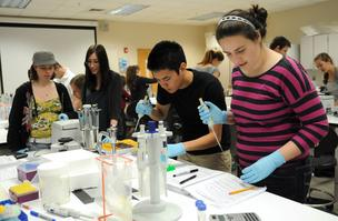 Second-year biomedical science students prepare DNA specimens for examination in a molecular biology lab at UCF.