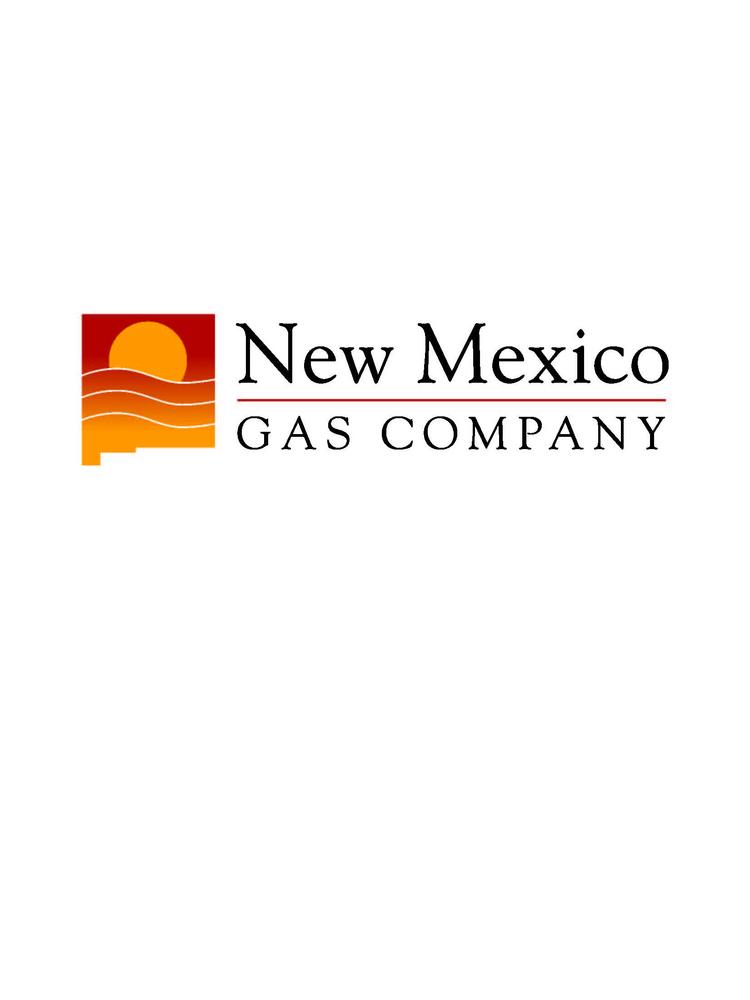 TECO Energy spent $9.2 million to acquire New Mexico Gas Co. during the 12 months ended June 30, but the deal is still far from closing.