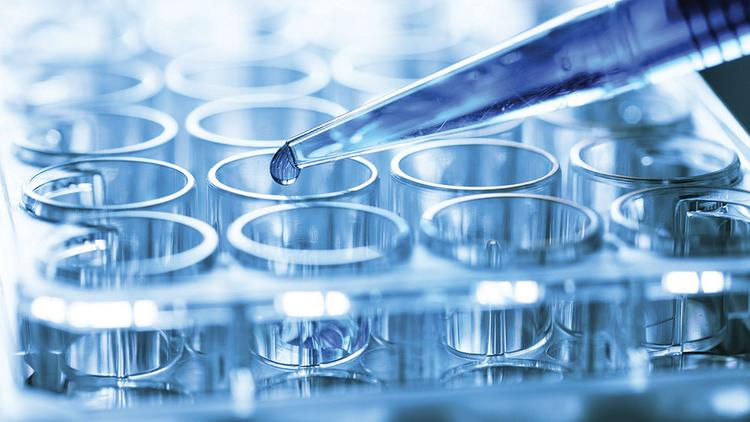 Biotechnology startups are getting more venture capital, experts are finding.
