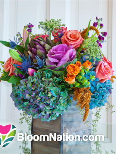 BloomNation, a Los Angeles-based startup that's backed by Boston venture firm Spark Capital, is officially launching its online marketplace for artisan florists in Boston this week.